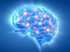 BrainActive recenze zákazníků